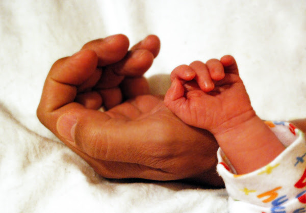 daddy & dylan - hands