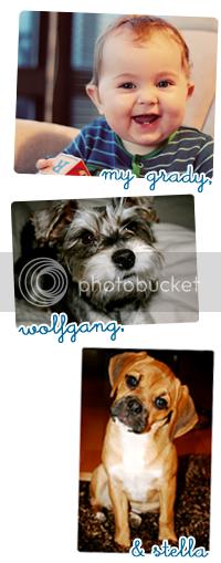 my grady, wolfgang & stella