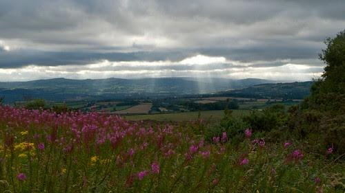 Dartmoor and Hay Tor, Devon