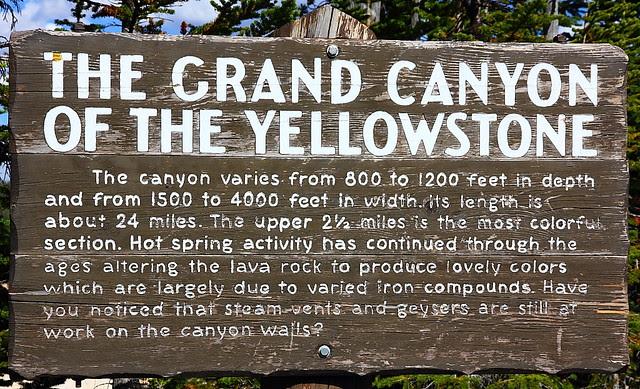 IMG_7526 Canyon