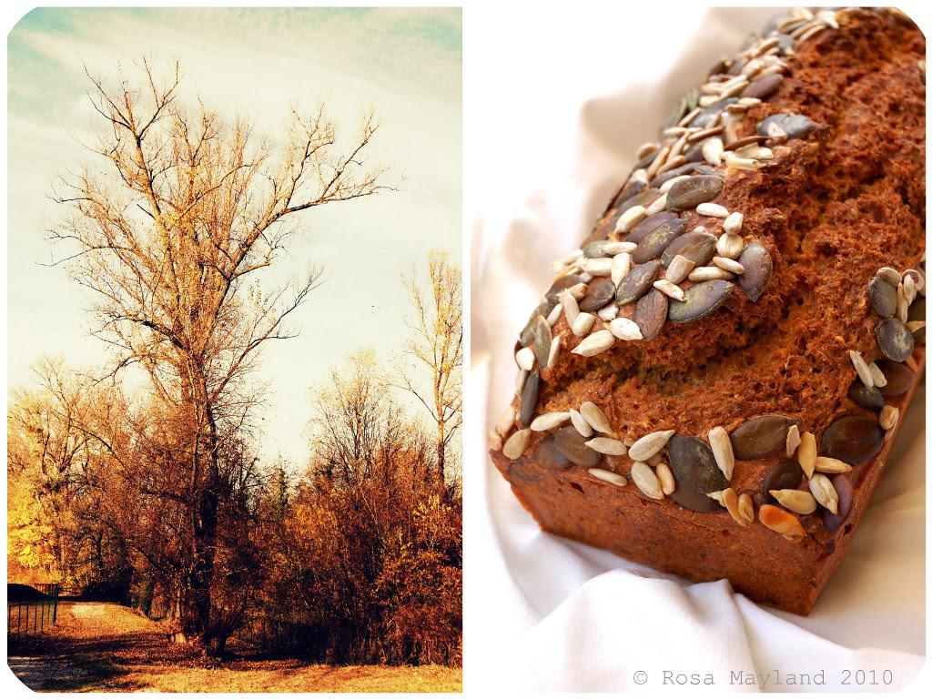 Norwegian Bread Picnik collage 1 bis