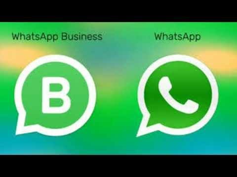 How to use WhatsApp business app WhatsApp kaise chalate hai
