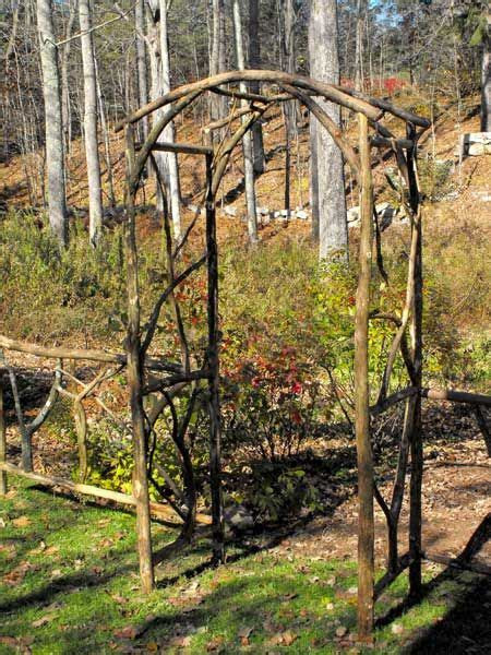 diy arbors  trellis   branches gardening