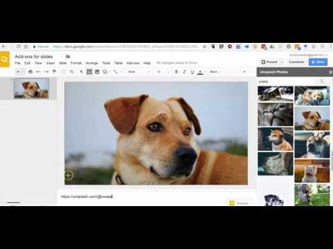 How to Find Free Photos Within Google Slides