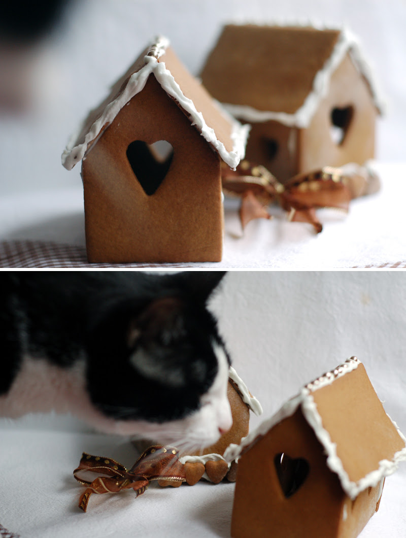 Gingerbread House + Cat