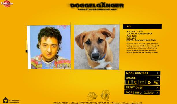 Scoprire il cane simile a noi inserendo una foto con Doggelganger