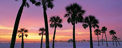 Photo: St. Petersburg-Clearwater, Florida / Nicholas Pitt/Getty Images