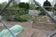 basel garden 019
