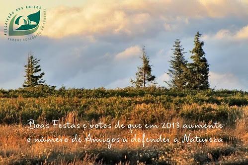 Boas Festas e votos de que em 2013 aumente o número de Amigos a defender a Natureza