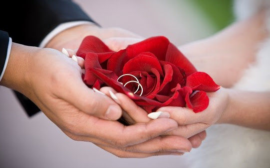 Anniversary Wedding Ring Couple Marriage Red Rose Congratulation
