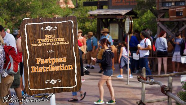 Disneyland Resort, Disneyland, Big Thunder Mountain Railroad, FastPass, Distriubtion