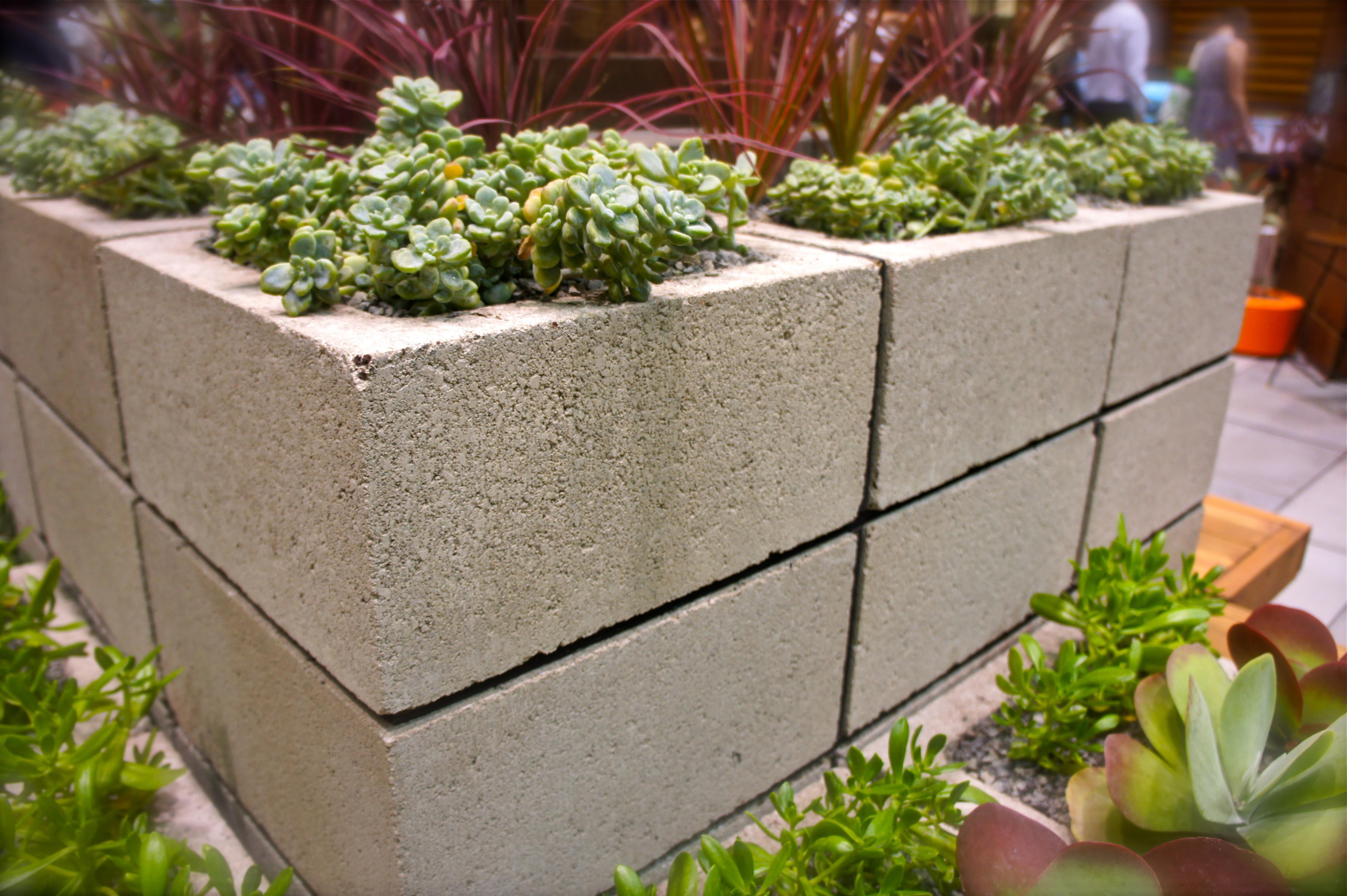 Easy Gardening Ideas Garden Design Ideas - desert vegetable garden design