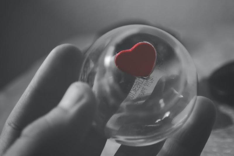 Que razões terá o meu coração para te amar?
