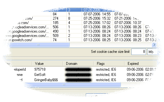Decrypted cookies