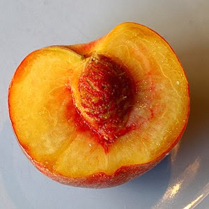 English: juicy peach half
