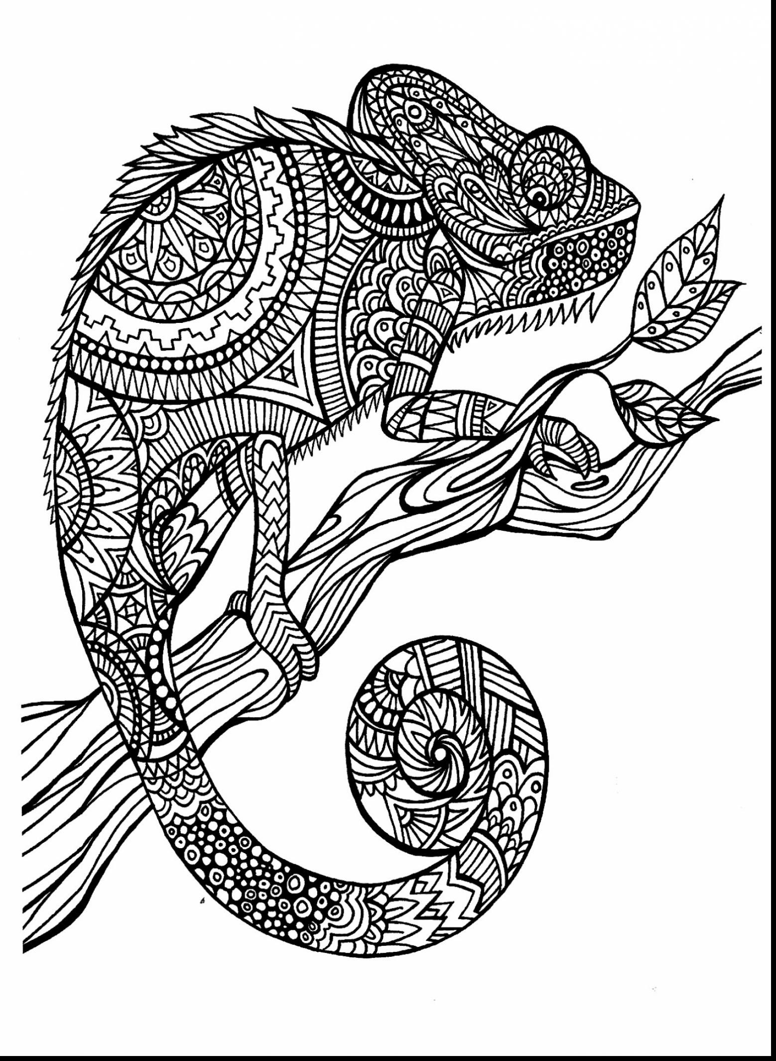 Cool Printable Coloring Pages For Adults Coloring And Drawing