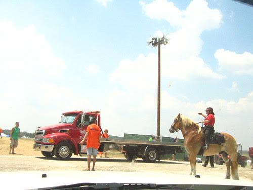They have horses and trucks at Bonnaroo