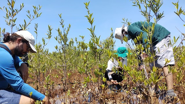 Corte de verbas ameaça pesquisas no Ceará: 'a gente perde noite de sono montando projetos'