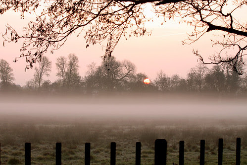 Christ Church Meadow Dawn