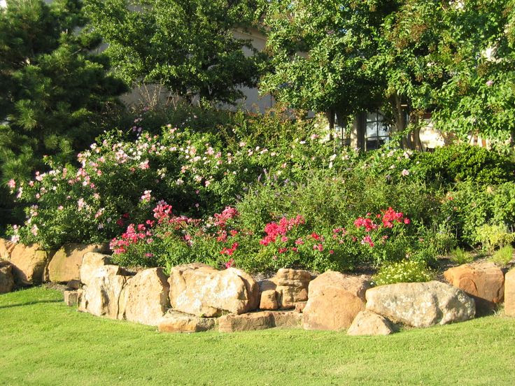 Landscaping ideas for backyard in texas