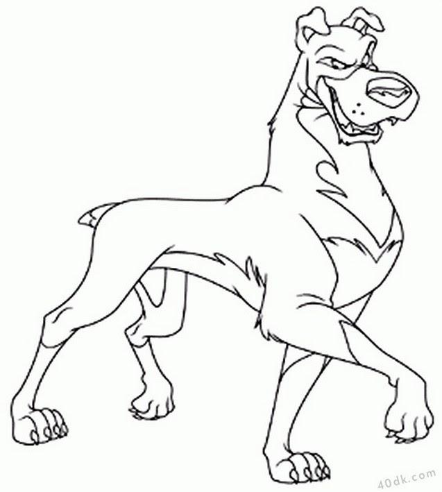 40dkcom Köpek Boyama Sayfası 55 40dk Eğitim Bilim Kültür