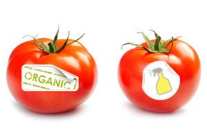 Inorganic Vs Organic Real Pros And Cons Thrive Chiropractic