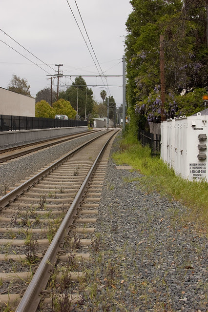 train tracks, wisteria