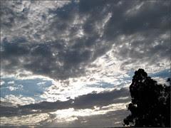 Late afternoon, Santa Maria CA
