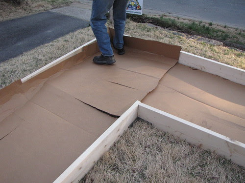 raised beds with cardboard