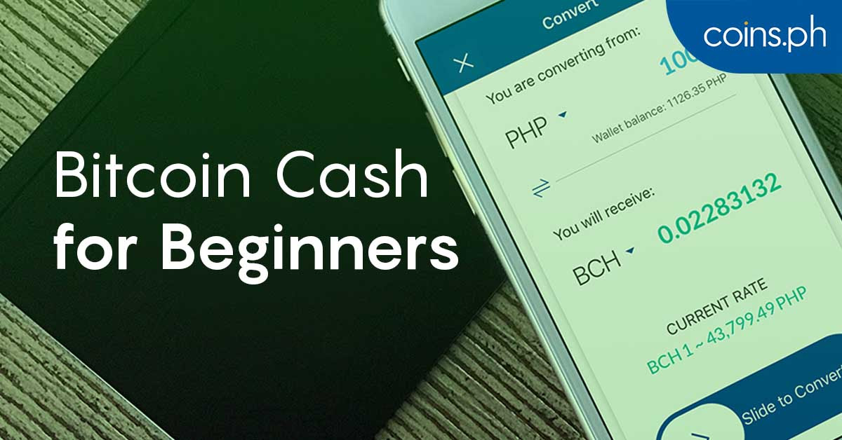 Everything You Wanted To Know About Bitcoin Cash Bch Coins Ph -