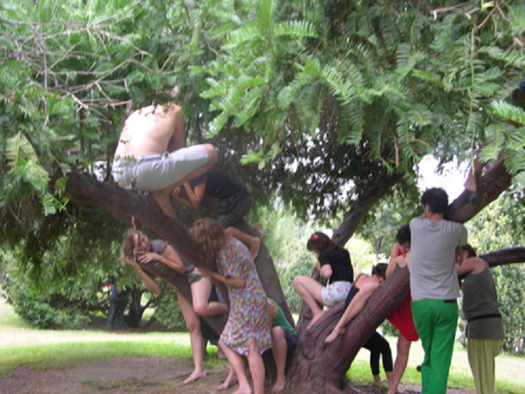 Sexo com árvores, orgasmos e banhos nus estão entre as práticas dos ativistas. Foto: Divulgação/sexecology.org