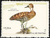 West Indian Whistling Duck Dendrocygna arborea