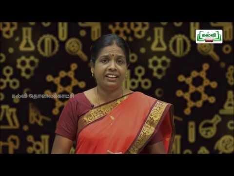 வகுப்பு 10 அறிவியல் அலகு 11 கார்பனும் அதன் சேர்மங்களும் Kalvi TV