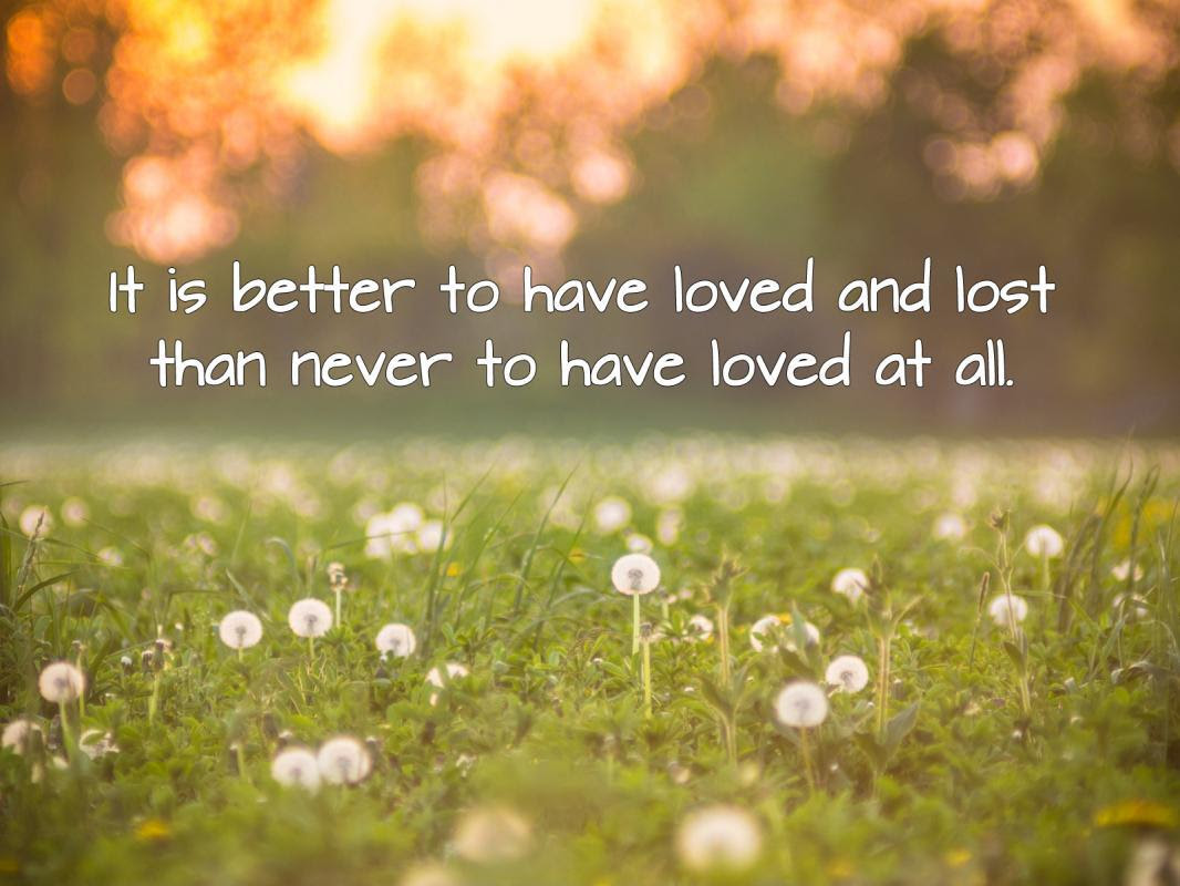 It is better to have loved and lost than never to have loved at all