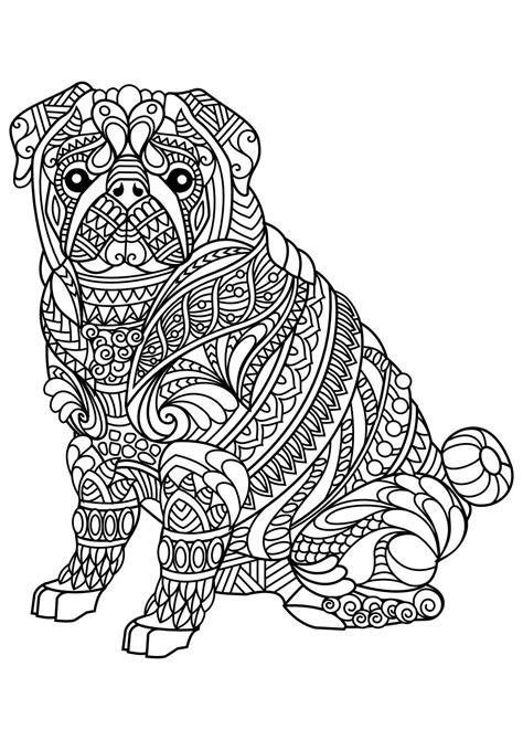 animal coloring pages  coloring animals horse