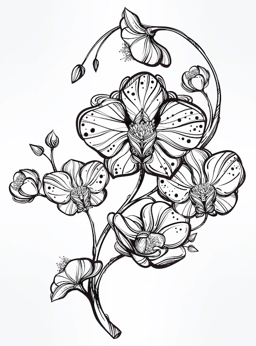 Orchid Tattoo Meaning Tattoos With Meaning