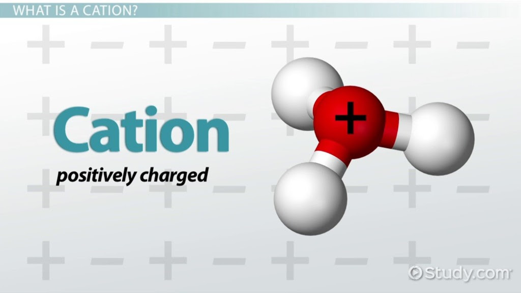 cation definition examples quiz_115636