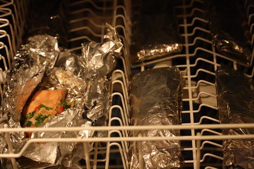 Salmon in the dishwasher