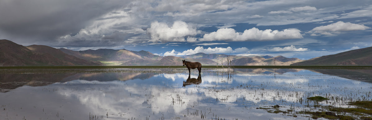 Phil Borges|Flooded Pastureland due to the rapid and accelerating glacial melt. Shannan Prefecture