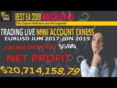Trading Live Mini Account Exness Profitable