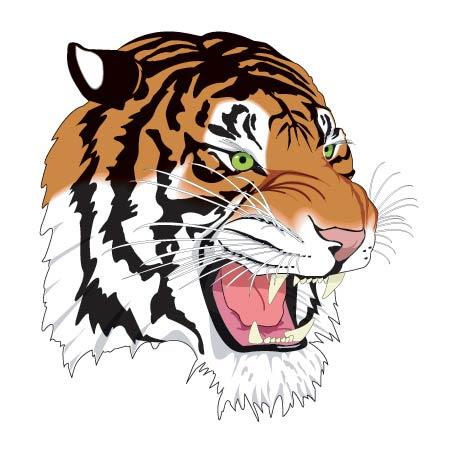 Colored Tiger Head Tattoo Design