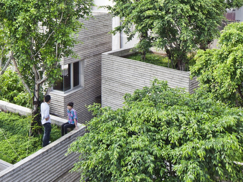 House_For_Trees_07