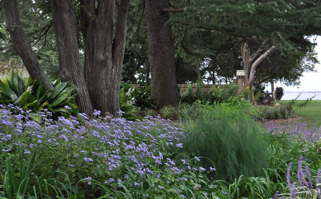 Gardenview 1
