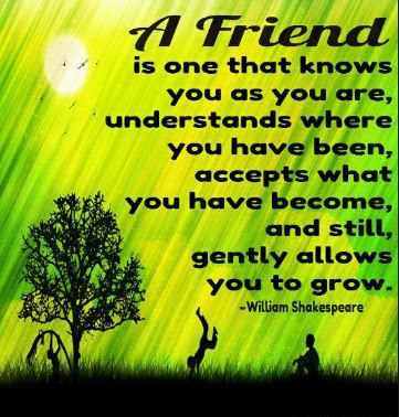 Inspirational Friendship Quotes And Images Friendships Surround
