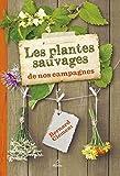 Les plantes sauvages de nos campagnes par Bernard Clément