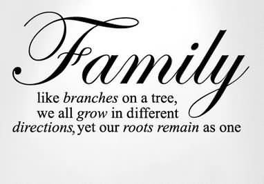 Family Like Branches On A Tree We All Grow In Different Direction