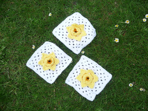 Daffodil Squares (only 3 more needed now!) Thank you.