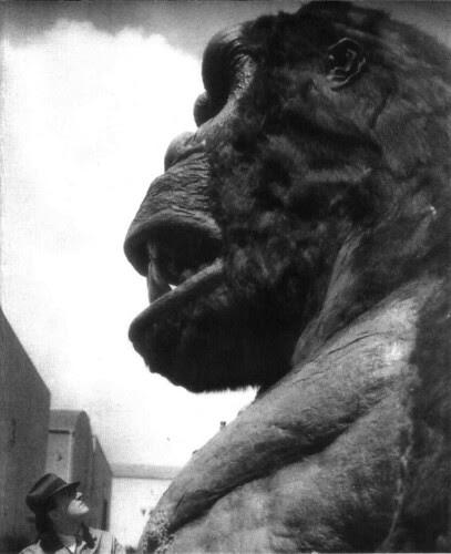 Rey Kong