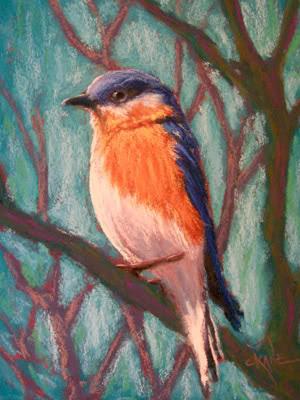 Einen Vogel mit Pastellkreide zeichnen -Anleitung ...