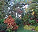 Jesse Durko Tropical Garden and Nursery